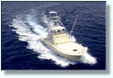 Sportfishing for marlin, tuna, wahoo
